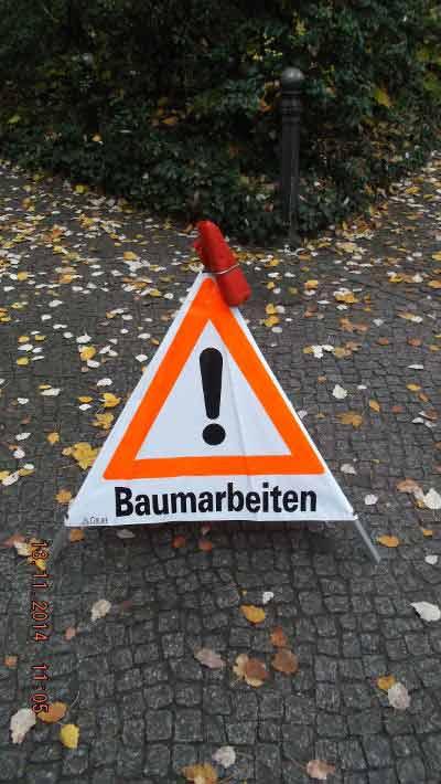 Baumarbeiten Berlin - Kroneineinkürzung Pappel